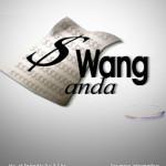 Wang Anda